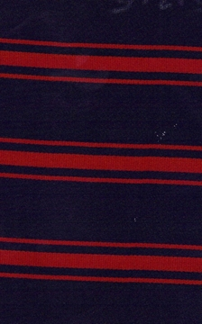 Picture of SHSH Student Council Tie